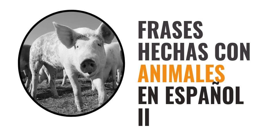 Spanish idioms - Animals part 2